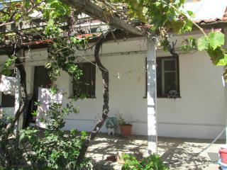 Skala Eressos Sommerhaus ganz / 7 Minuten zu Fuß zur Se, Mytilene