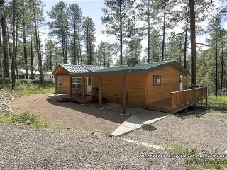 Virginia Canyon Cabin 650, Ruidoso