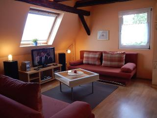 Vacation Apartment in Koblenz - 603 sqft, direct views to the Rhine River, great starting point for…