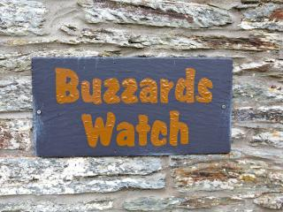 Buzzards Watch