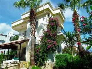 Villa Mehsan is surrounded by palm trees and local flowers