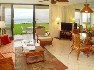 Papakea Resort - Papakea Seabreeze Condo (#L103), Lahaina