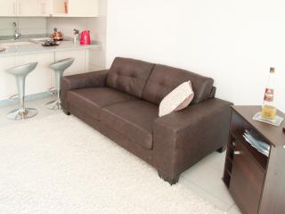 New cozy furnished department in Bellavista 901, Santiago