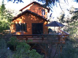 Modern Mountain Cabin, Serenity and Sunshine, Pine Mountain Club