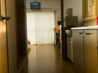 Beautiful Studio Apartment in Historical Okazaki, Kioto