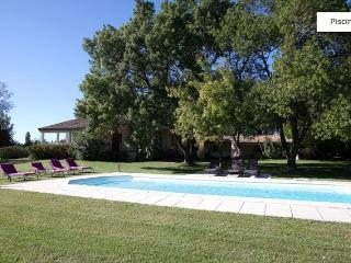 Superb house in Provence - Alpilles, 10 pax., Fontvieille
