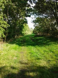 Enjoy secluded walks on the farm with peace, tranquility