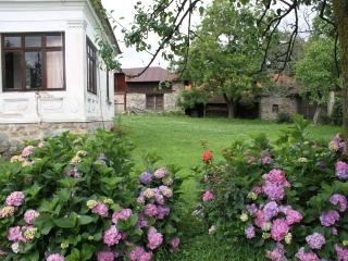 Spacious traditional Romanian house, Craiova