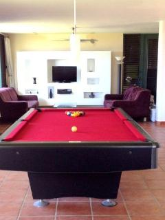 Private, In-House Professional 9 ft. Pool Table with Ocean View!