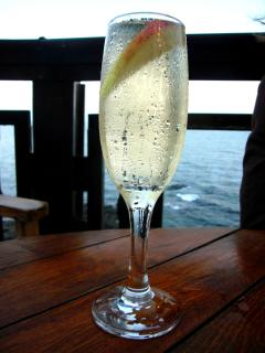 Wind down with a glass of icy cold bubbly down the beach, or in the backyard watching the sea