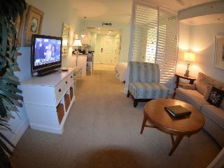 4 Star Resort, Luxury Studio Suite,Private Beach, Tampa