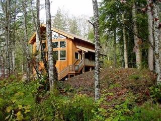 40GS Pet Friendly Cabin with a Hot Tub, Game Room & WiFI, Glacier
