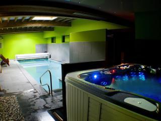 piscine intérieure avec jacuzzi