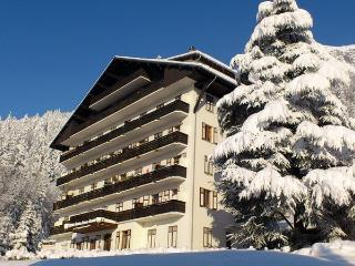 Appartement big 90m2 in front of Mont-Blanc, Passy