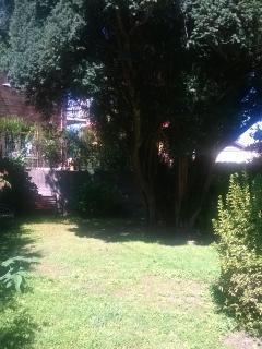 Il giardino privato per leggere in pace e relax.