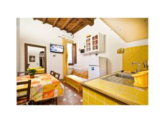 Max Guelfa 2 Bedroom Apartment with Courtyard, Florence
