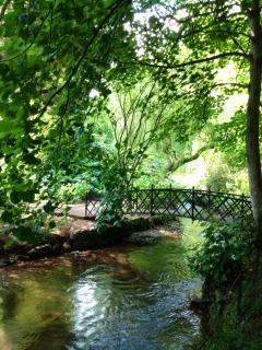Dunster Castle Gardens