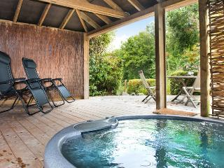 Ivy Apartment, Indio Lake, Bovey Tracey