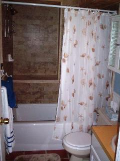 Bathroom - tub/shower combo with seat