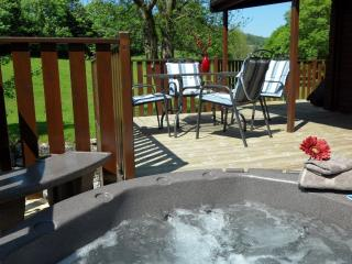 Tarn Hows Lodge - 2 bedrooms and Hot Tub, Windermere