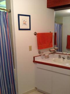 Bathroom from upstairs bedroom