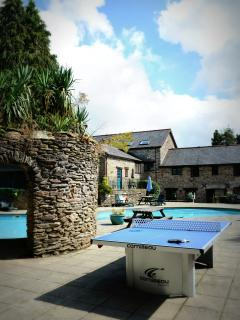 What about table-tennis by the pool?