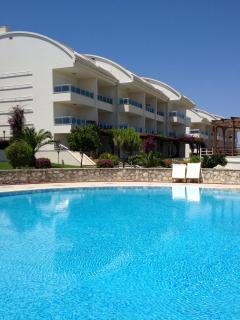 Pool and exterior view of apartments