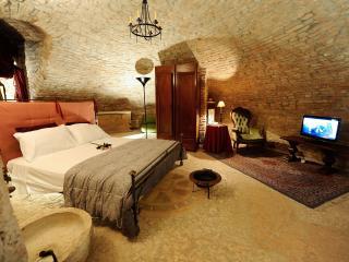 Historical Apartment - Palazzo Valenti Gonzaga