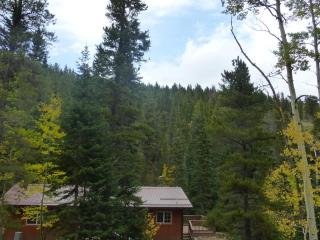 Moon Creek Cabin - Wooded Streamside Cabin, Nederland