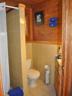 Bathroom with tiled shower stall, vanity sink, hot water