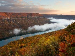 Tennessee River Gorge Island Cabin  $178 Weekdays, Chattanooga