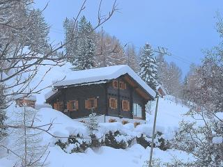 Ski-in ski-out chalet in 4-Vallees, sleeps 8, WiFi