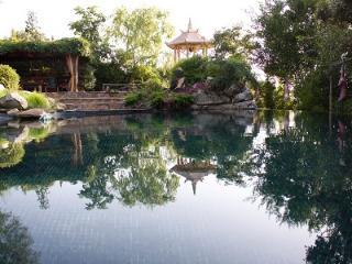 Exuberante  Jardín Oriental a 50 km de Madrid, Aldea del Fresno