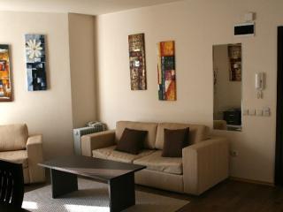 Faboulous 35 sqm livingroom