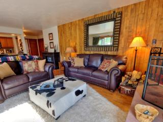 Newly-remodeled Beautiful 2bd/2ba Vail condo