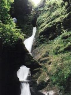 St Nectan's Glen & Waterfall