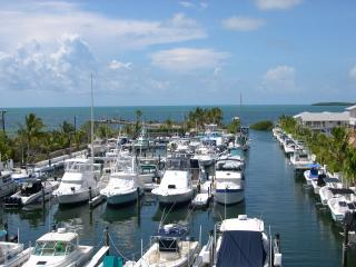 Licensed Manager W/10 Rentals Available - 2/2 Suite - OCEANFRONT BEACH RESORT!