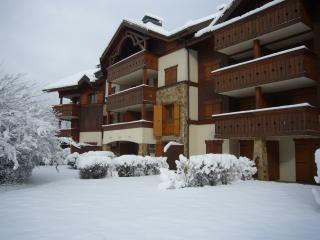 Samoens Apartment French Alps