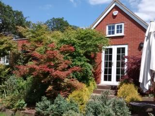 New Forest - Criddlestyle Cottage  5 bedrooms, Fordingbridge