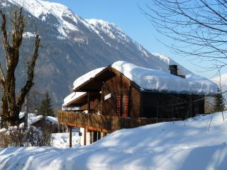Chamonix Traditional wooden chalet with wonderful