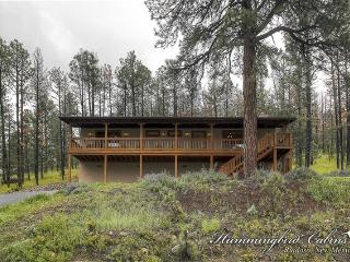 Peaceful E Z Feeling 684 - in Alto, NM, Ruidoso