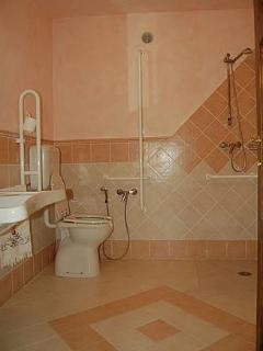 Shower room also adapted for wheelchair