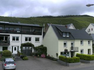 Vacation Apartment in Lieser (Mosel) - spacious, modern, fully equipped (# 5220)