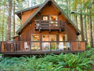 27GS Pet Friendly Cabin Near Mt. Baker with WiFi, Glacier