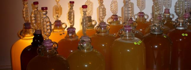Cider Production - book The Piggery in October and you can join in the fun!