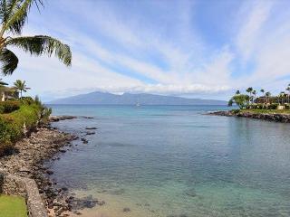 Oceanfront 1 bdr + loft bdr! Condo #202 overlooking Honokeana Cove.