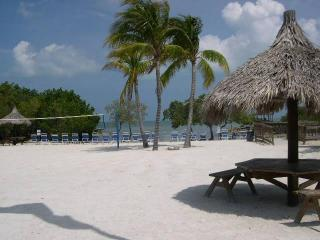 2/2 W/Direct Ocean Views - Ocean Front Beach Resort - Free Secured WiFi!, Key Largo