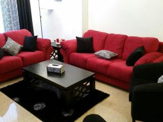 Beautiful furnished apartment for rent in Amman