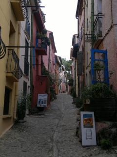 Lots of art galleries in the alleys of Collioure