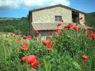 Casa Voltole delightful countryside apartment, Magione
